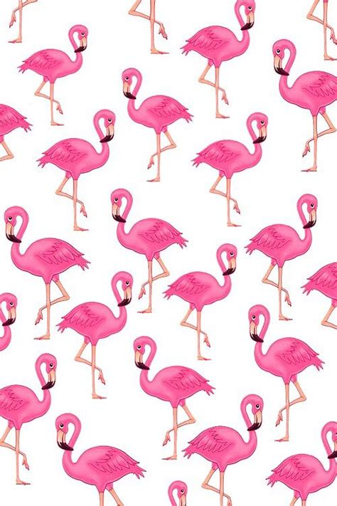 patternator animation flamingo pelican background wallpaper pink backgrounds