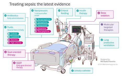 sepsis flowchart septic shock pathophysiology flowchart flowchart in word