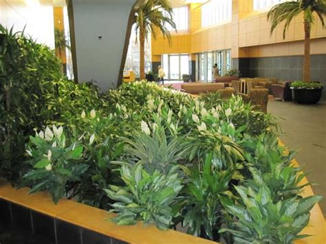 interior plant design home design