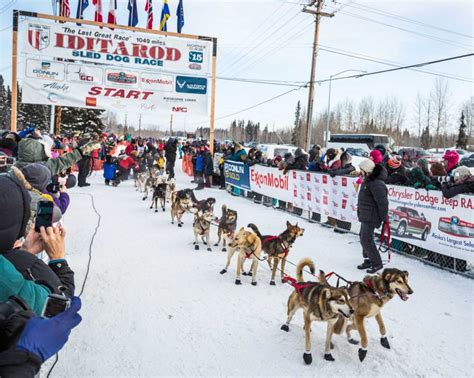 race in alaska alaska s lack of snow drives iditarod sled race 250 snowbrains