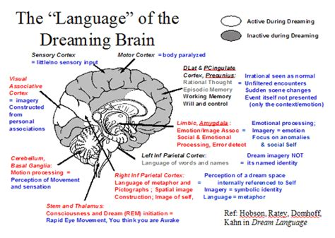 language pattern brain dreams and healing asd e study groups the association