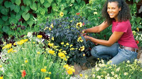 haircut garden city sc 4 easy care flower beds sunset magazine sunset magazine