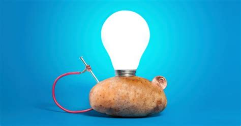 Potato Light Bulb by 10 Weirdest Ways Scientists Are Using Everyday Things