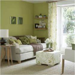 olive green living room possibly for the home