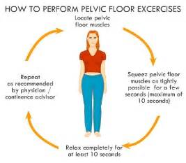 sihatselalu kegel pelvic floor exercise