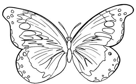 Ausmalbilder, Malvorlagen ? Schmetterlinge kostenlos zum
