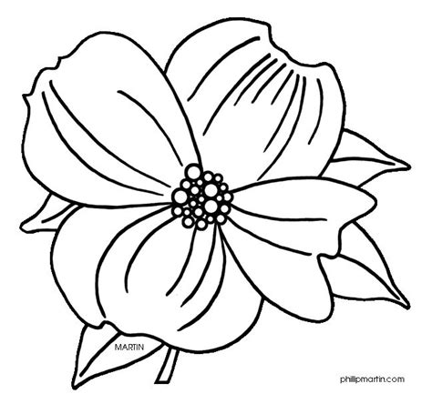 coloring page of dogwood flowers virginia state flower dogwood tatoos pinterest