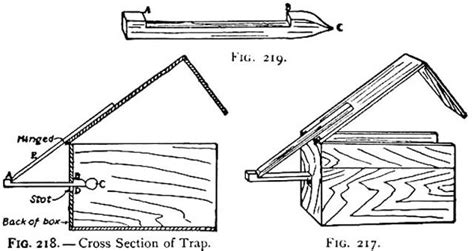 figure 4 trap diagram squirrel trapping figure four trap how to build a
