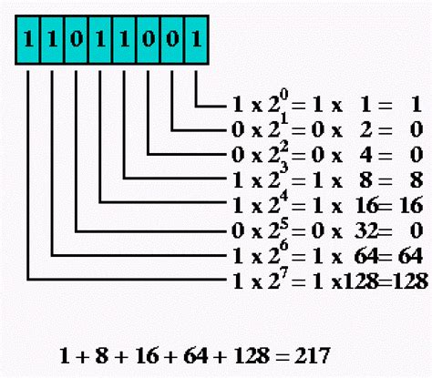 Converter Binary To Decimal | how to convert binary number to decimal in java algorithm