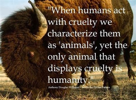 Animal Quotes Quotes About Humans And Animals Quotesgram