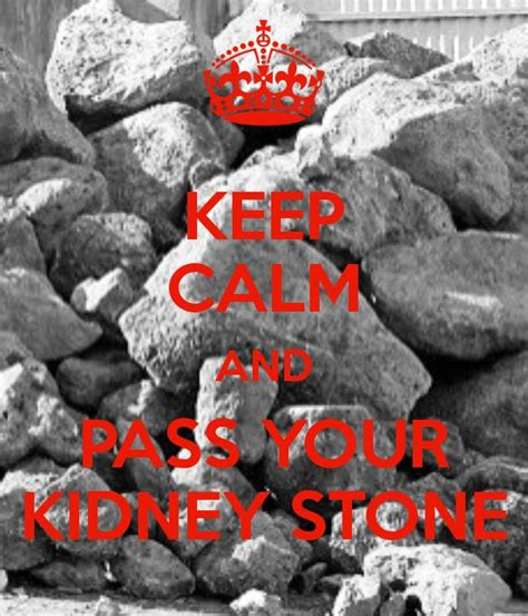 Kidney Stones Meme - best 25 kidney stone humor ideas on pinterest