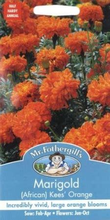 Tanaman Marigold Orange benih marigold kees orange 75 biji mr