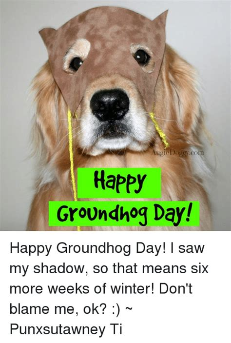 groundhog day you don t me augi co happy groundhog day happy groundhog day i