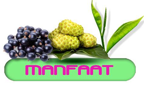 Obat Gemuk Herbal Nasa nasajogja jual pupuk organik nasa obat herbal