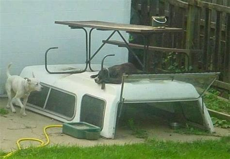 boat dog house bored to death redneck inventions