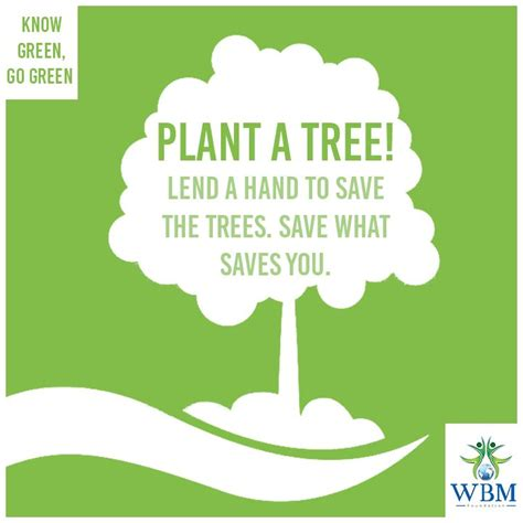 Plant Trees Save Environment Essay by 12 Best Save Forest Images On Plant Trees And Animais