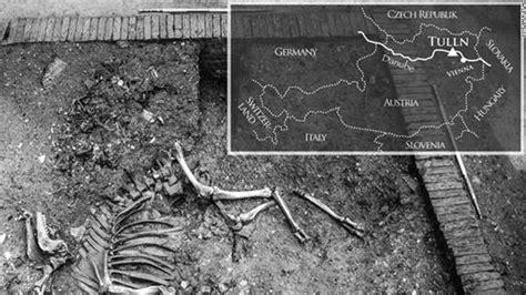 otomano humano hallan un esqueleto de camello otomano en un s 243 tano