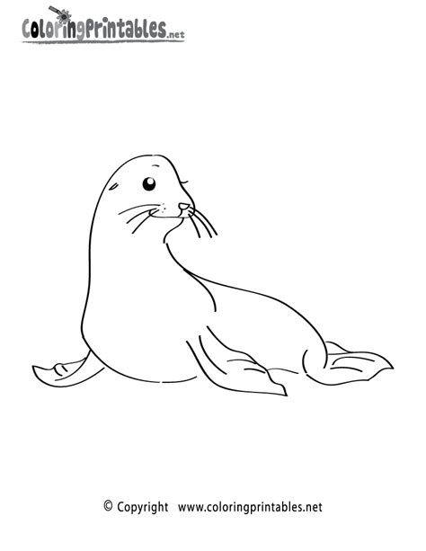 sea lion coloring pages printable go back gt pix for gt sea lion coloring pages