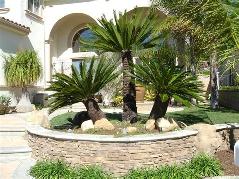 Backyard Trees Landscaping Ideas Tropical Front Yard Landscaping Ideas With Palm Trees This For All