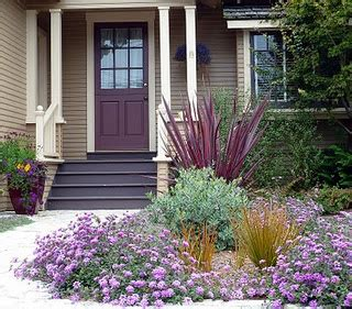 eggplant front door t t and others house color