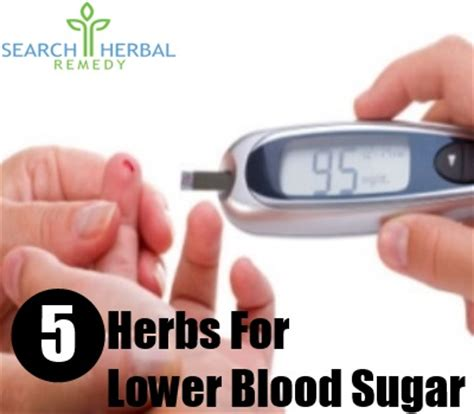 5 herbs for lower blood sugar herbs to lower