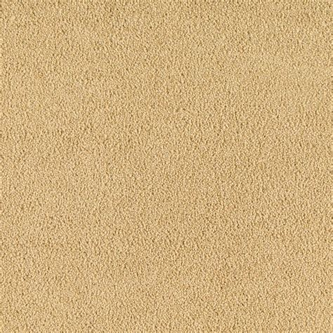Golden On Carpet by Softspring Carpet Reviews Carpet Review