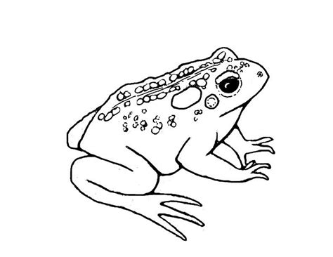 coloring pages frog and toad nintendo toad coloring pages coloring pages