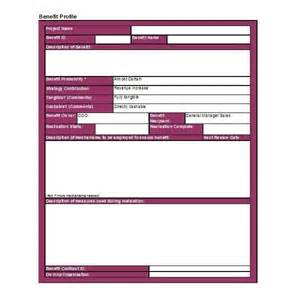 Management Profile Template by Practical Approach To Project Benefits Management Free