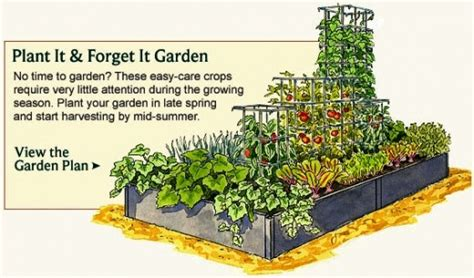 Planting Vegetable Garden Layout Vegetable Garden Layouts On Garden Layouts Vegetable Garden Design And Potager Garden