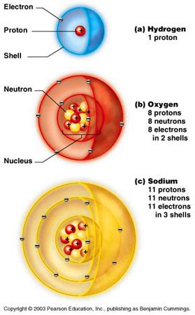 Protons Chemistry by Introduction To Biology Chemistry Atoms Molecules