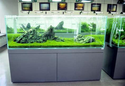 terima pesanan pembuatan meja aquarium aquascape bandung