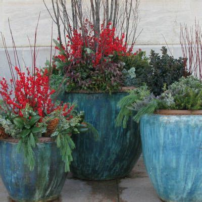 8 tips for fall and winter container gardening 25 best ideas about winter container gardening on