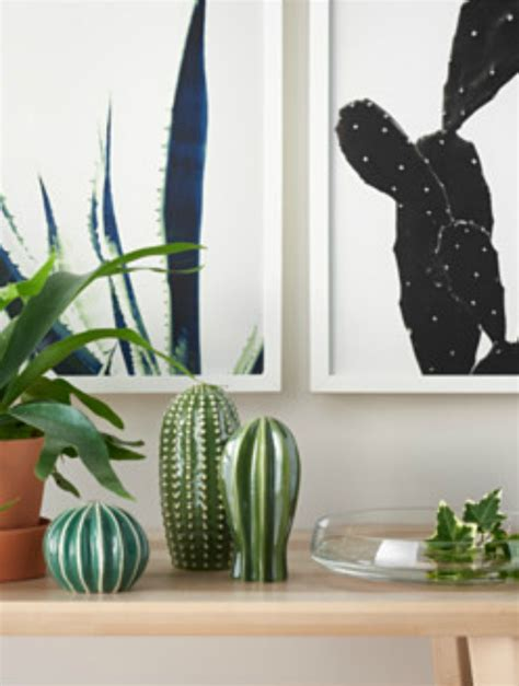 cactus trend cacti home decor inspiration we believe in style