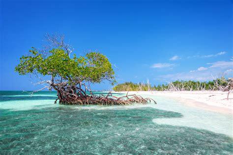 a cuba 5 plages incontournables 224 cuba guide de voyage cuba