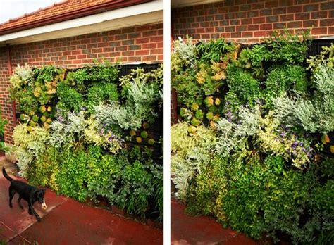 diy vertical garden diy vertical gardens diy garden