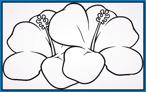 imagenes de flores faciles para colorear dibujos de flores hermosas para colorear archivos