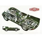 1955 Jaguar D Type Cars Technical Cutaway Wallpaper