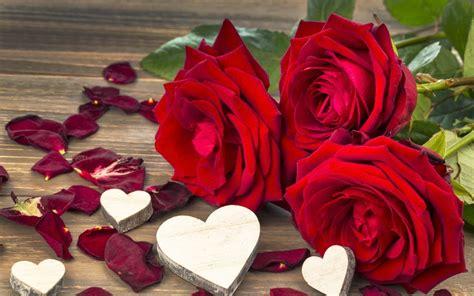 imagenes romanticas de rosas y corazones fotos hermosas de corazones y rosas fotos bonitas de