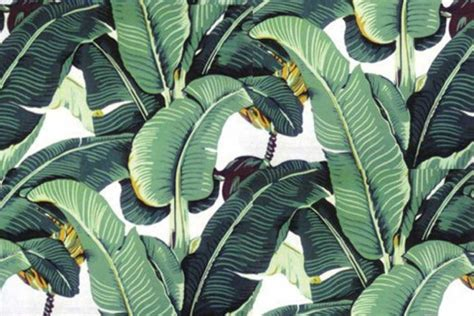 banana palm wallpaper beloved palm print wallpaper can be yours too the star