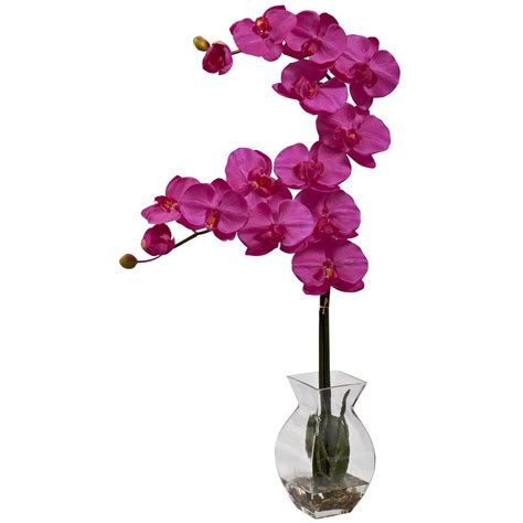 Orchid Arrangements In Vases by 24 Inch Phalaenopsis Orchid Arrangement In Vase 1295