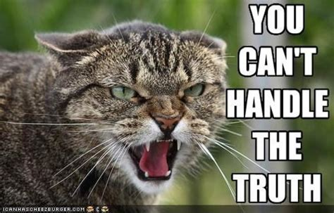 You Can T Handle The Truth Meme - image 556580 you can t handle the truth know your meme