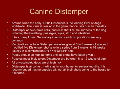 how can a live with distemper puppy viruses