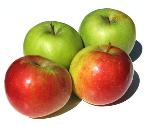 Apple Four free stock photos rgbstock free stock images apples 3 lusi january 29 2010 103