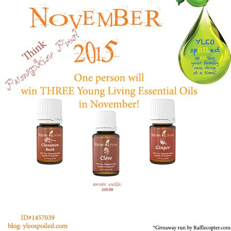 November Giveaway - seed to seal think one change