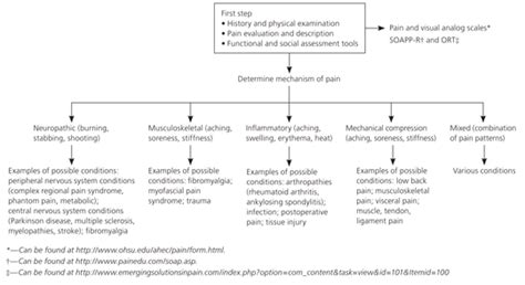 injury management policy template chronic nonmalignant in primary care american