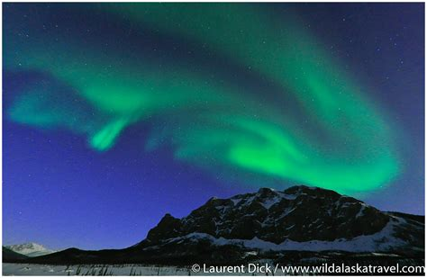 Northern Lights Tours by Alaska Travel Alaska Northern Lights Tour Photos