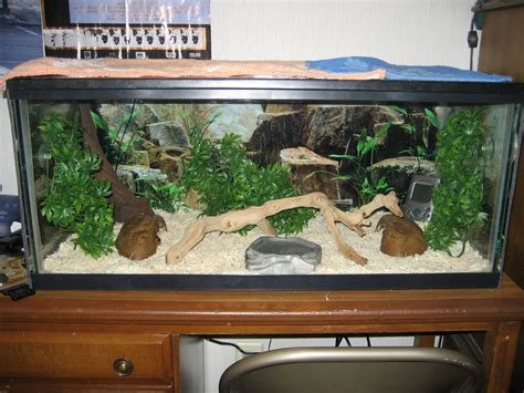 how to your to stay in the cage diesels cage setup pythons net gallery