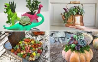 succulent planter 29 creative succulent planter ideas you should definitely