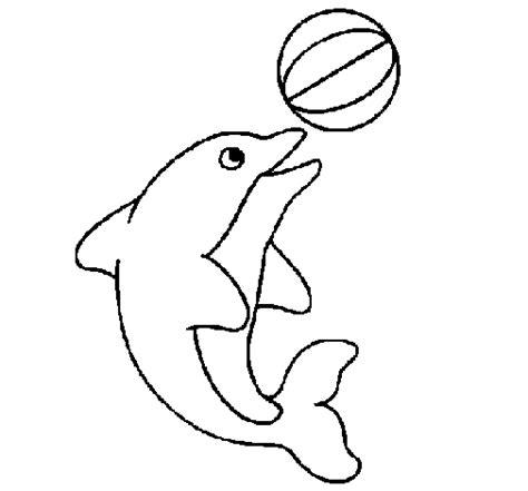 imagenes de animales jugando para colorear dibujo de delf 237 n jugando con una pelota para colorear