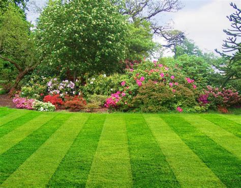 Gardening Naturally Gardening Naturally With Lawns Benefits Of A
